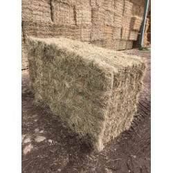 Conventional Bale Hay Packs