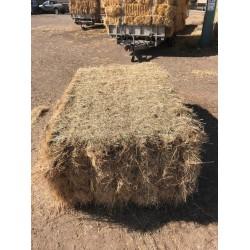 Big Bale Hay