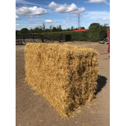 Conventional Bale Barley Straw Packs