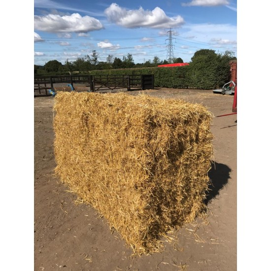 Conventional Bale Barley Straw