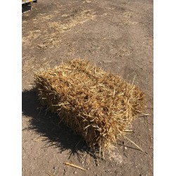 Conventional Bale Wheat Straw