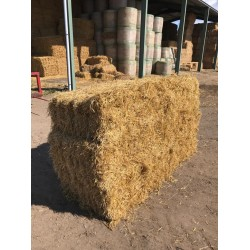 Conventional Bale Wheat Straw Packs